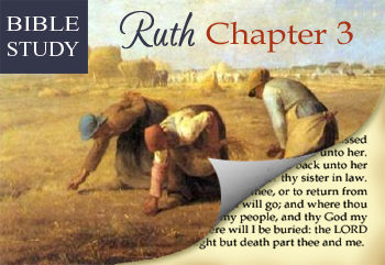 Threshing Floor Bible Study : Bible Study - Ruth Chapter 3 & a Link Up!! - Time-Warp Wife  Time ...
