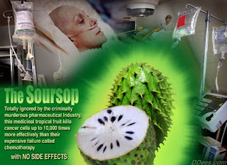 http://www.women-info.com/en/anticancer-soursop/