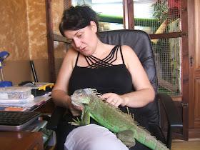 Hector Paul's Iguana
