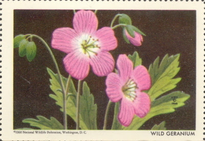 1963 National Wildlife Federation Wild Geranium