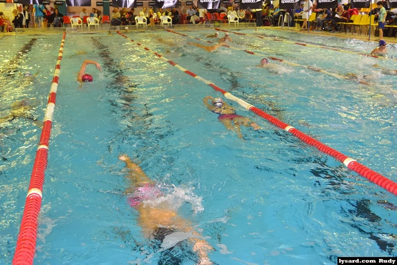 Actualit s mouscron comines la piscine aqua lys organise for Piscine dauphin mouscron