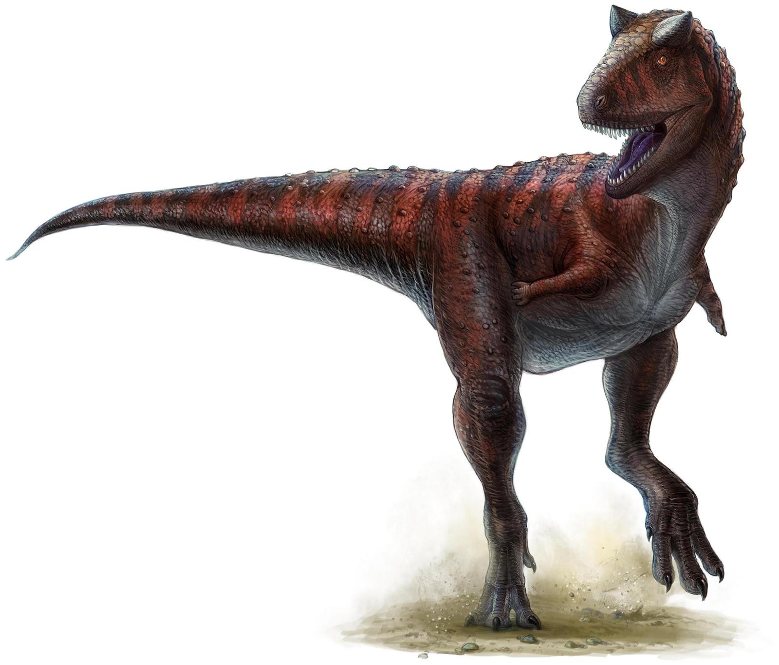 Carnotaurus short arms