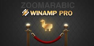 برنامج Winamp Pro تشغيل ملفات الصوت والفيديو