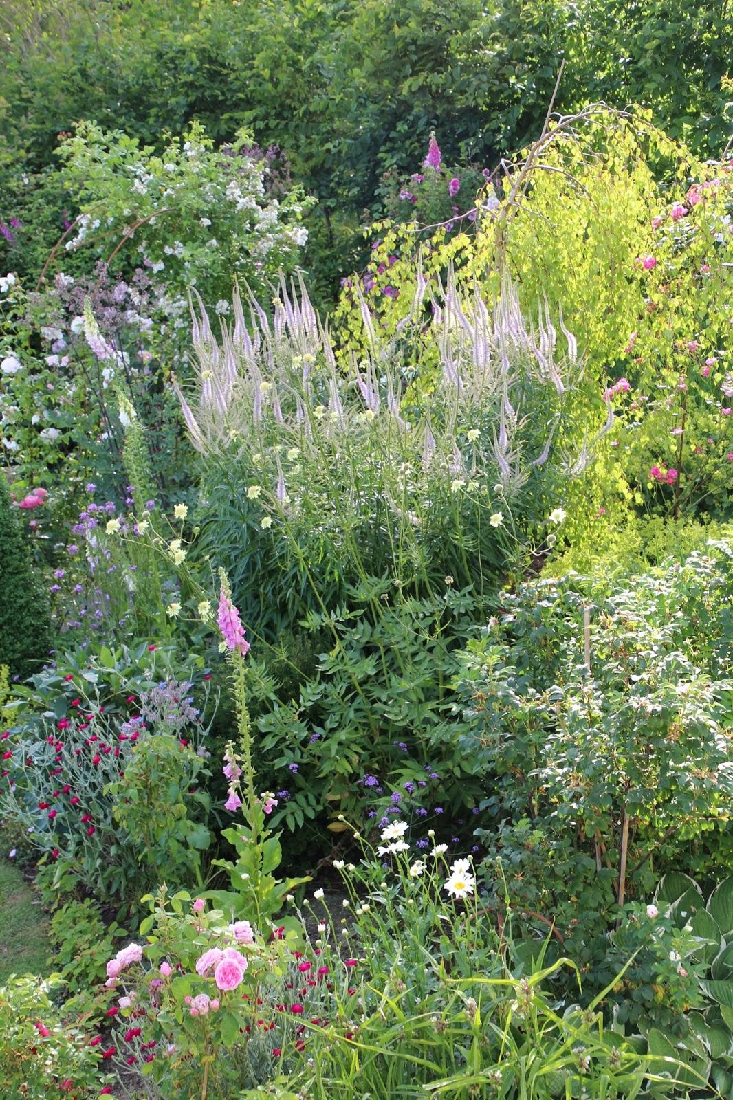 perennrabatt trädgård blogg