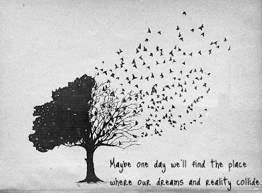 Keep dreaming **