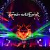 Dimitri Vegas and Like Mike - Tomorrowland 2012