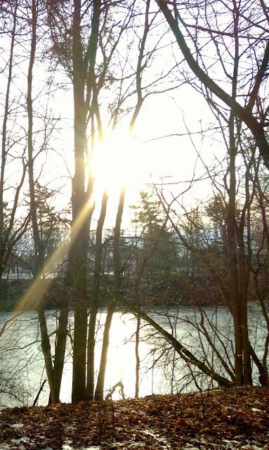 Lake Lisgar Winter - New House New Home
