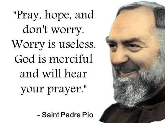 Padre Pio Quotes Little Plant Of Stfrancis Favorite Quote Of Stpadre Pio