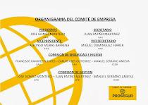 ORGANIGRAMA DEL COMITE EN CADIZ