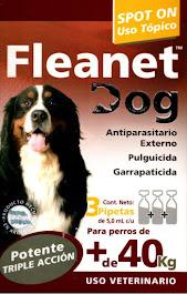 FLEANET DOG