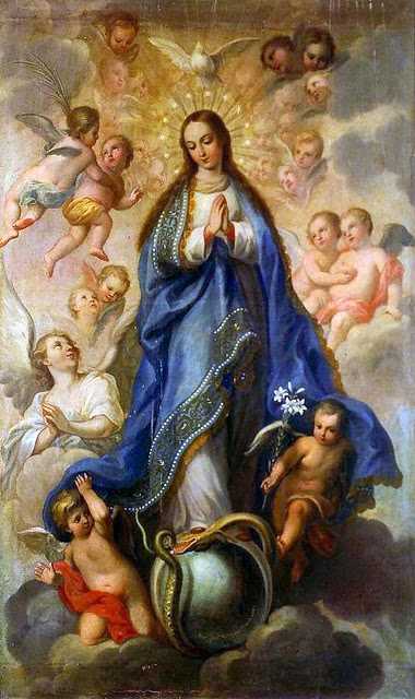 Image result for immaculate conception images religious