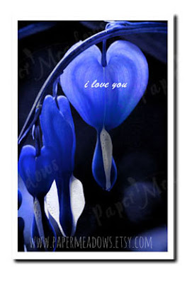 Valentine's Day I Love You Card for him. Blue Bleeding Heart. You can purchase and download our photography creations and instantly print at home from our Paper Meadows Photography Shop on ETSY. To Visit our shop now click here.