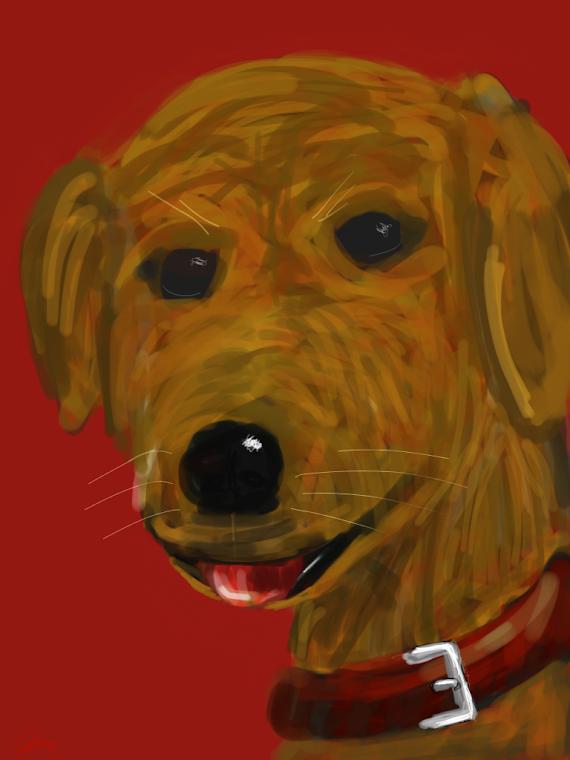 Drawing of Daisy