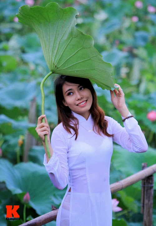 The lotus and Vietnam girls