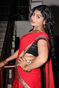 Sowmya glamorous half saree photos-thumbnail-12
