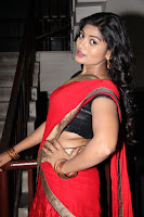 Soumya sizzling in half saree 008.JPG