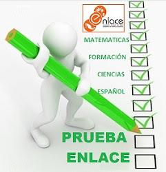 CONSULTA LOS RESULTADOS DE ENLACE