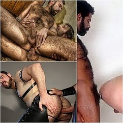 Anal com Peludos, parte 1