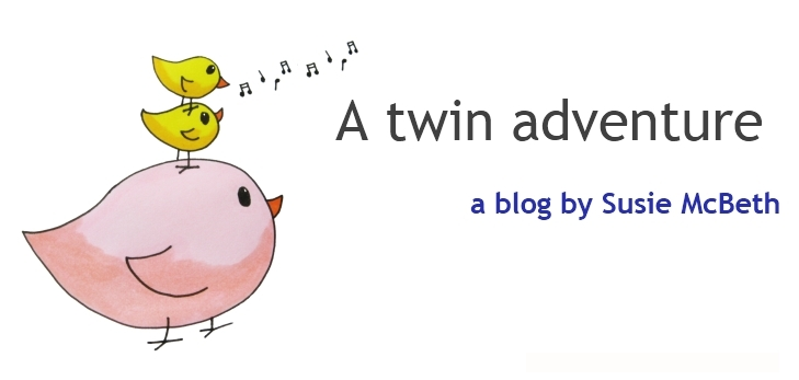 A Twin Adventure: A blog by Susie McBeth
