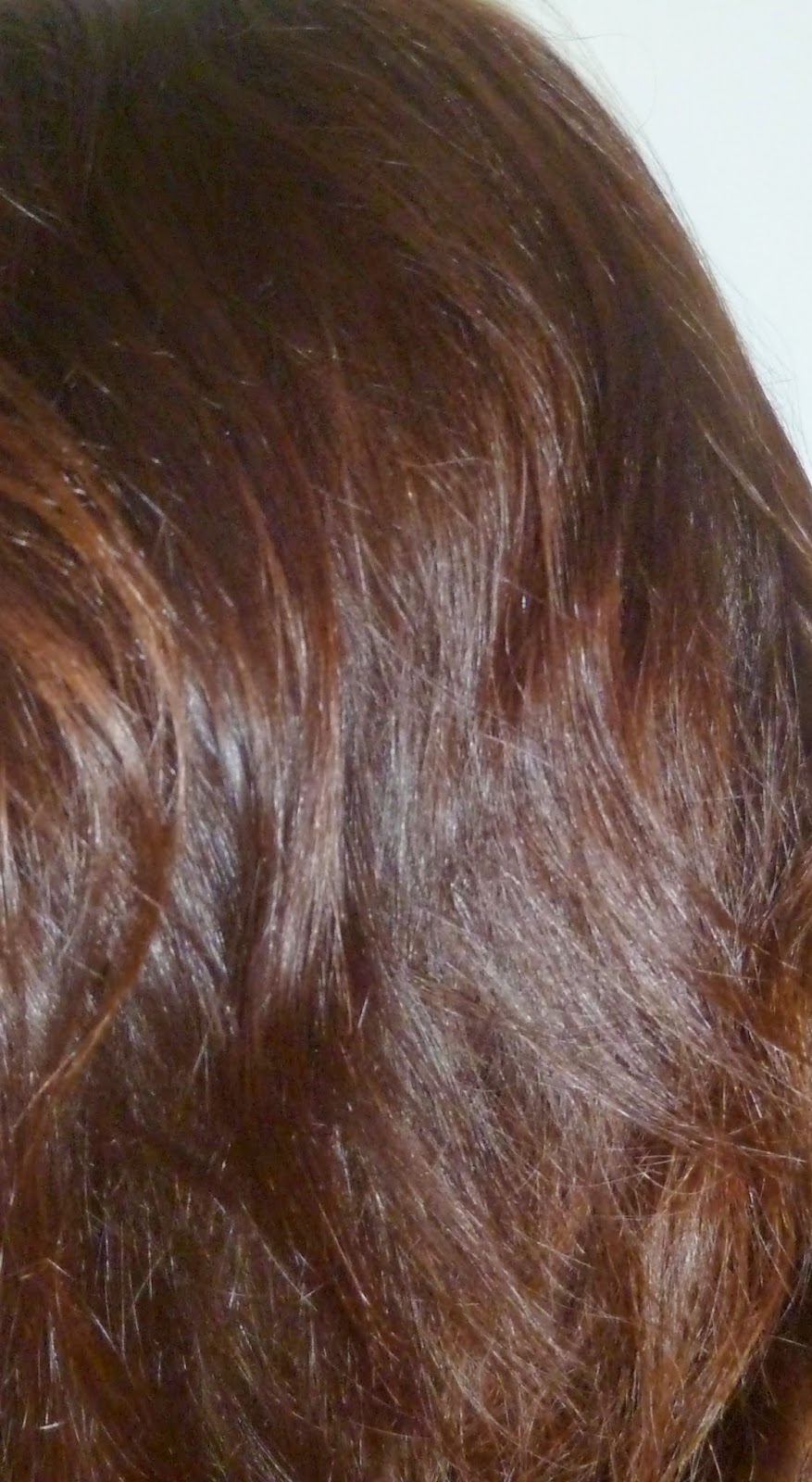 gnralement je moffre toujours une sance chez le coiffeur la rentre malheureusement cette anne en raison de quelques achats dispendieux haul de - Coloration Gloss Chocolat