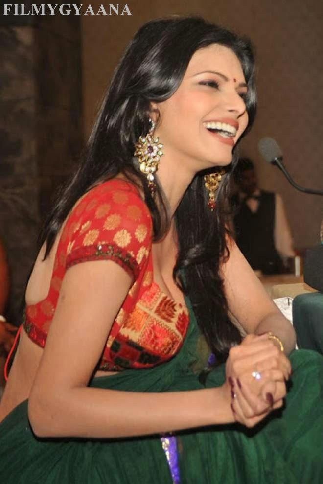 Sherlyn Chopra Latest Hot Navel Show Saree Photo