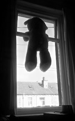 Teddy Bear Left in Window - Huddersfield