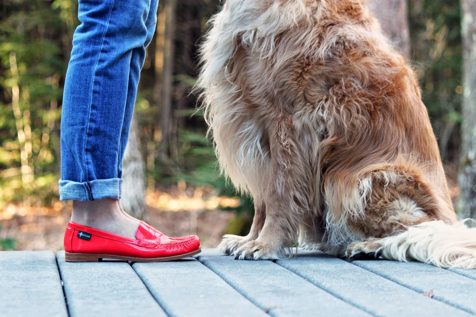 Coral Penny Loafers + Golden Retriever // The Salty Hanger