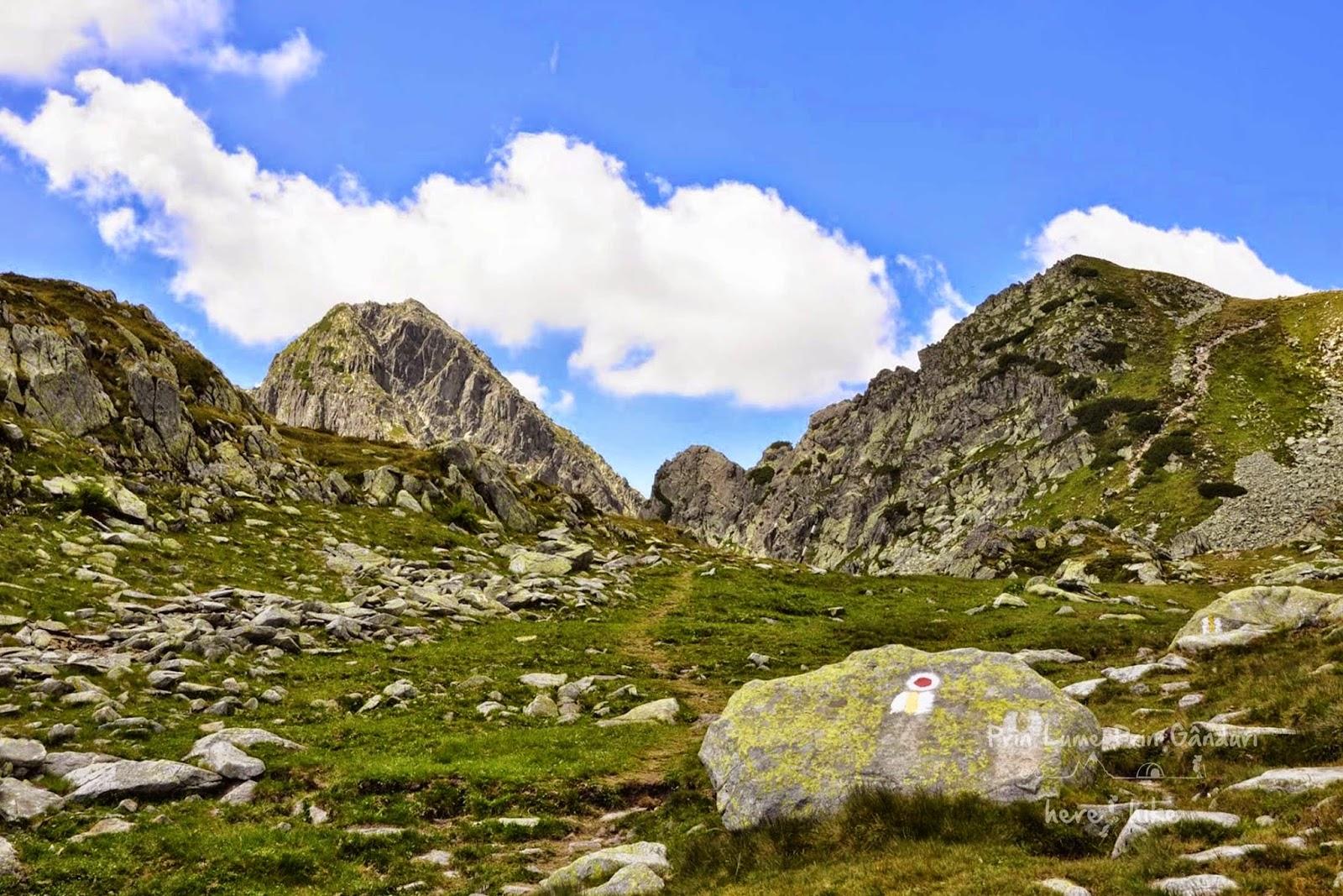 retezat-peak-hike-start-footpath