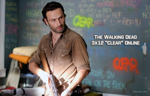 The Walking Dead 3x12 Online