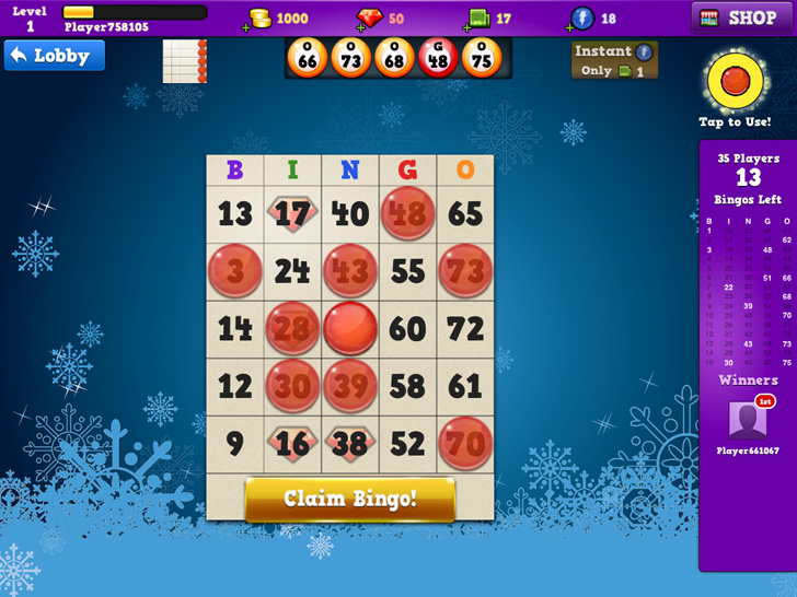 Bingo Seasons Free App Game By TiniDream Studios