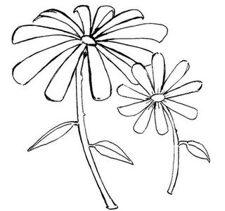 Desenhos Para Colorir Girassol e flor