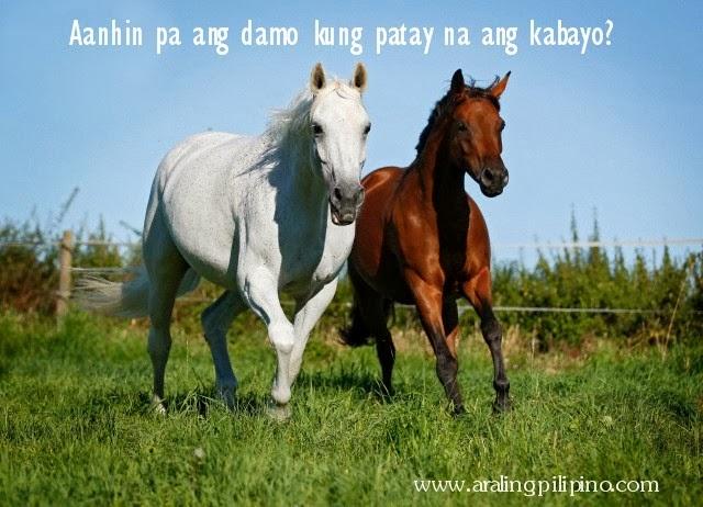 aanhin pa ang damo kung patay na ang kabayo salawikain