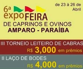 Divulgada a Programação Oficial da VI Expofeira do Município de Amparo