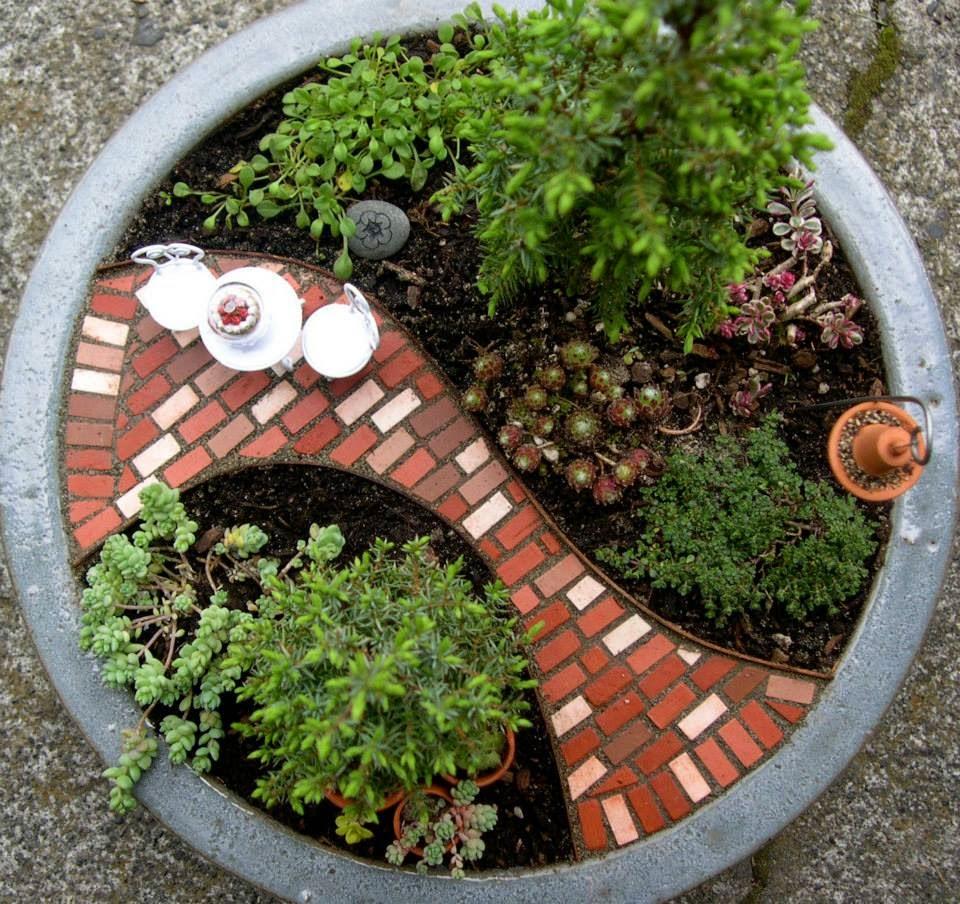 tieu canh de ban, tieu canh tren ban lam viec, mini garden, vuon ti hon, chau canh mini