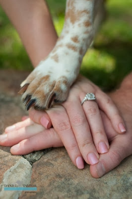 Doeblerghini Bunch:  Puppy Paws Engagement Ring Picture