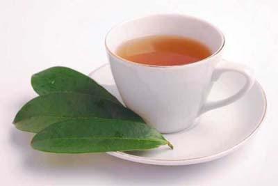 Benefits of Soursop leaf For Uric Acid