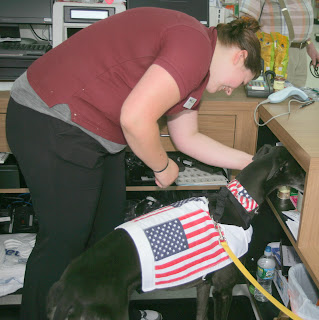 Bettina greyhound investigates behind sales counter