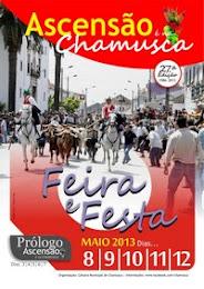 chamusca 2013
