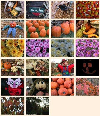 Autumn Harvest Desktop Wallpapers2