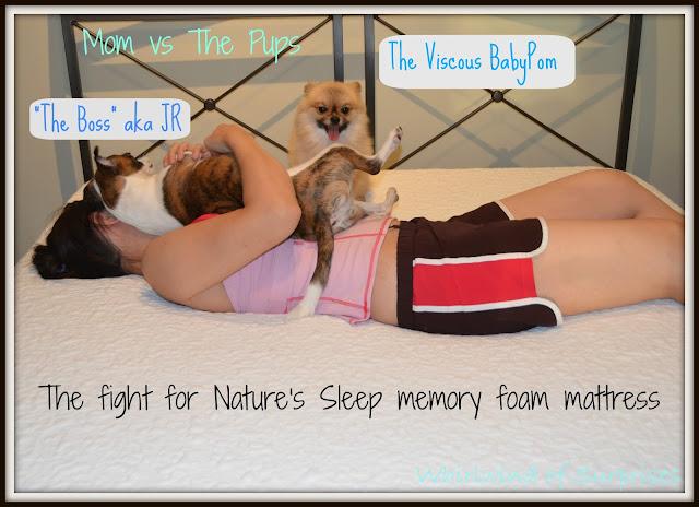 Mom vs the pups #NSAmbassador