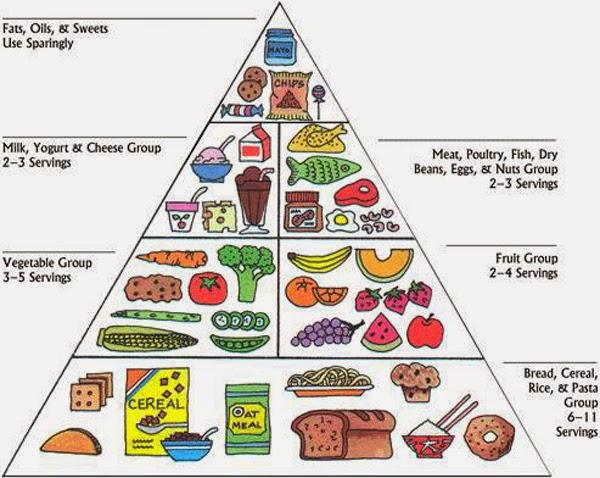 Health food pyramid diet