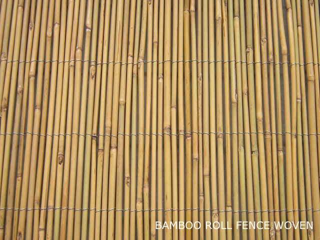 มิถุนายน 2013 Bamboo Valance Photo