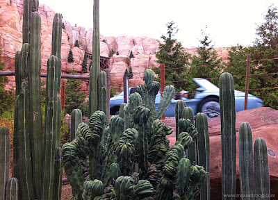 Radiator Springs Racers cactus cacti queue line