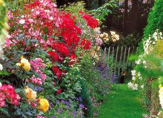 Merci qui merci montessori travaux dans mon jardin 2014 - Quel arbre dans mon jardin ...