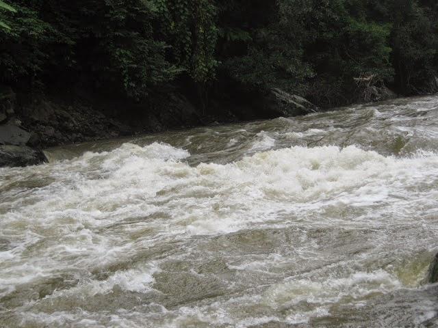Tips Mancing Di Sungai Berarus Deras