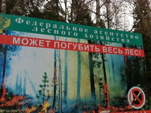 Угроза от Федерального агентства лесного хозяйства.