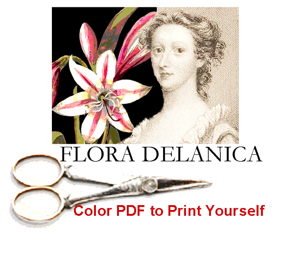 FLORA DELANICA ---Buy All 12 Patterns
