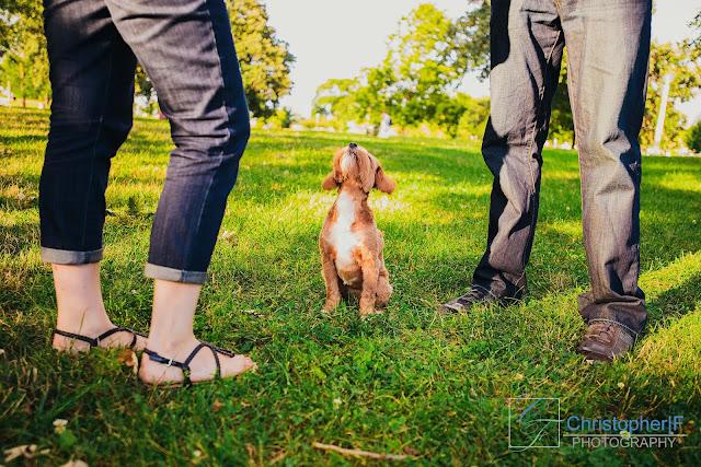 Dog Engagement Photo Chicago