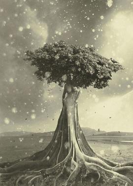 ΟΔΥΣΣΕΑΣ,  ΤΡΟΠΟΝ ΤΙΝΑ: παρουσίαση της ποιητικής συλλογής της Κούλας Αδαλόγλου