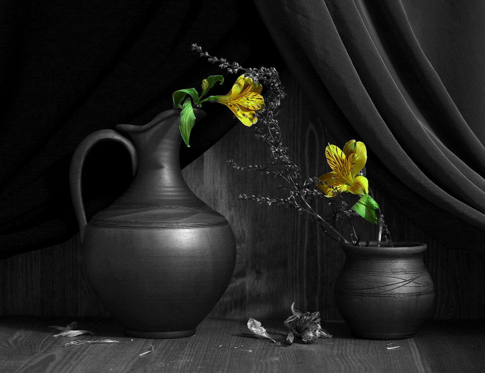 still life black and white photography with color black